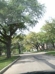Tanglewood Drive